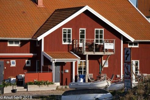 copyright 2016 Knut Sørli-28