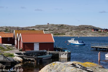 copyright 2016 Knut Sørli-4